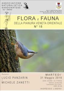 FLORA E FAUNA DELLA PIANURA VENETA ORIENTALE N° 18 Relatori LUCIO PANZARIN e MICHELE ZANETTI