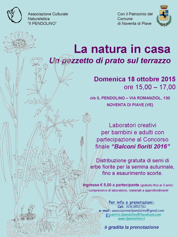 NATURA-IN-CASA-evento-pendolino-ANS-michele-zanetti