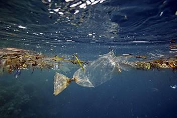 OCEANO-DI-PLASTICA-associazione-naturalistica-sandonatese-michele-zanetti