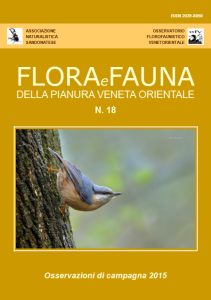 flora-e-fauna-della-pianura-veneta-orientale-n-18-anno-2016
