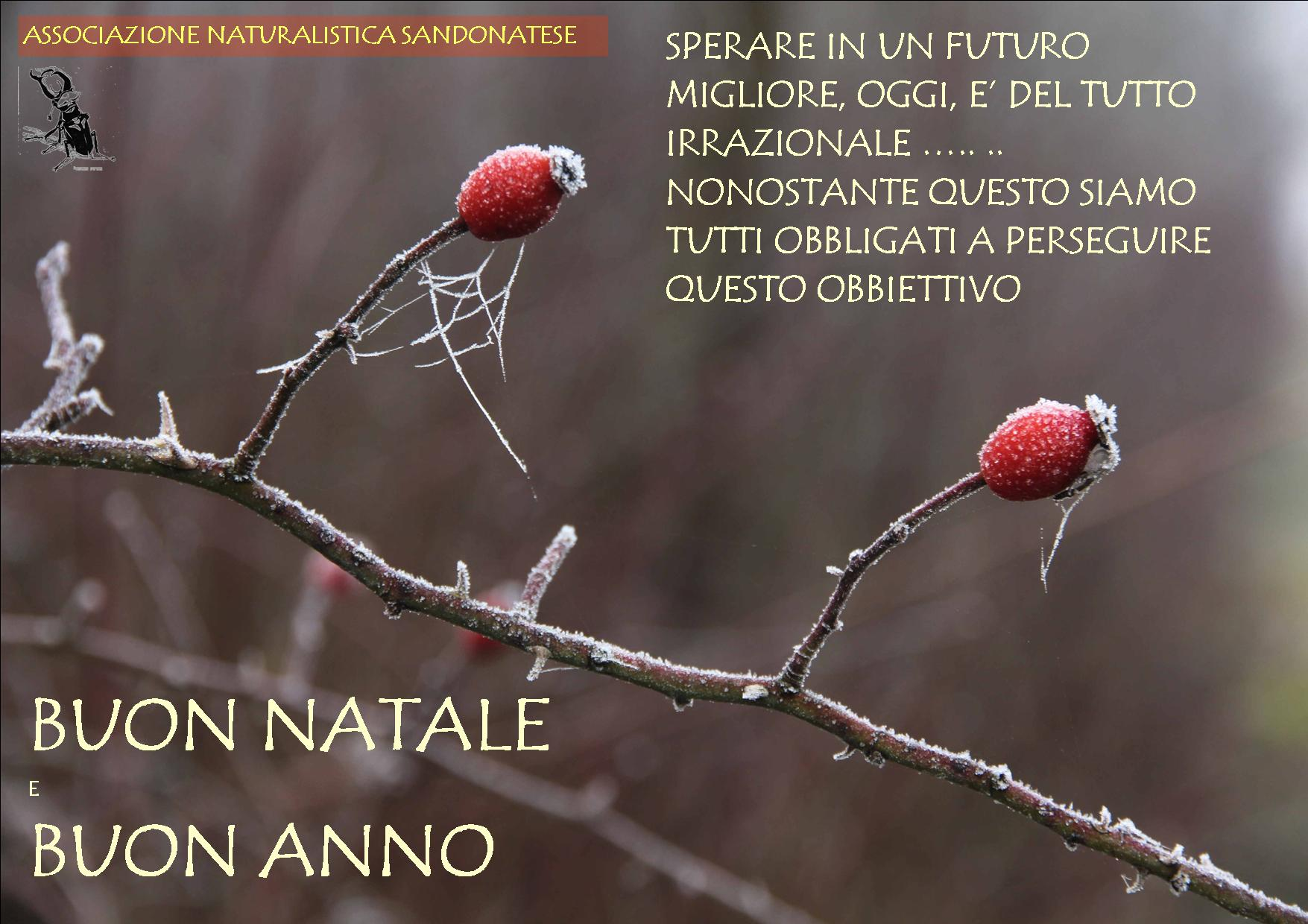 AUGURI!!! - SPERARE IN UN FUTURO MIGLIORE- Michele Zanetti