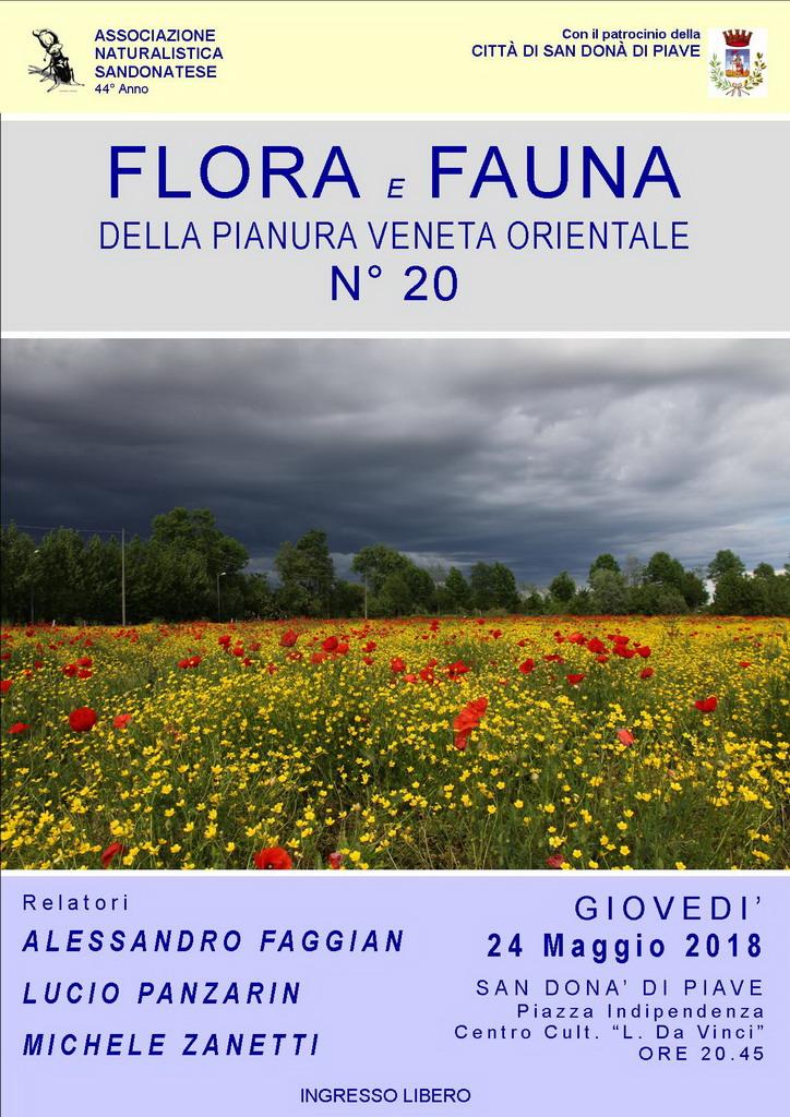 flora-e-fauna-della-pianura-veneta-associazione-naturalistica-sandonatese-michele-zanetti