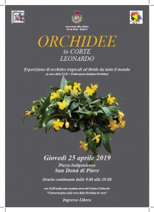 ORCHIDEE-in-corte-leonardo-san-dona-di-piave