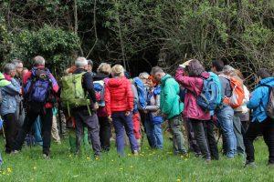escursione TISOI 07-04-2019 - associazione naturalistica sandonatese