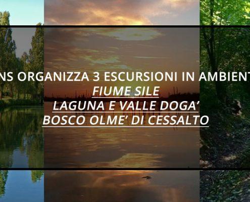 ANS-3-ESCURSIONI-IN-AMBIENTE-FIUME-SILE-BOSCO-OLME-VALLE-DOGA