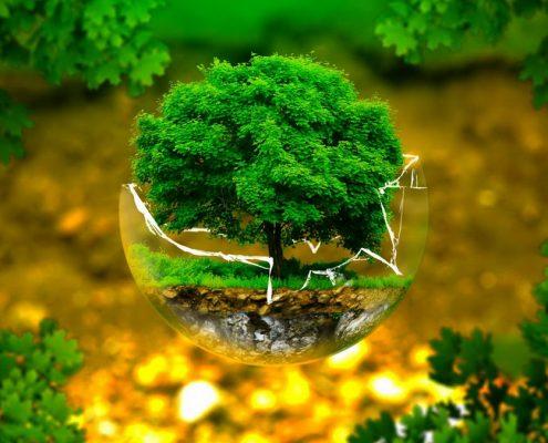pesticidi-difesa-dell-ambiente-associazione-naturalistica1